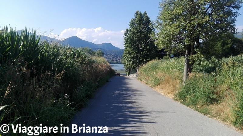 Laghi balneabili in Brianza, il lago di Pusiano a Merone