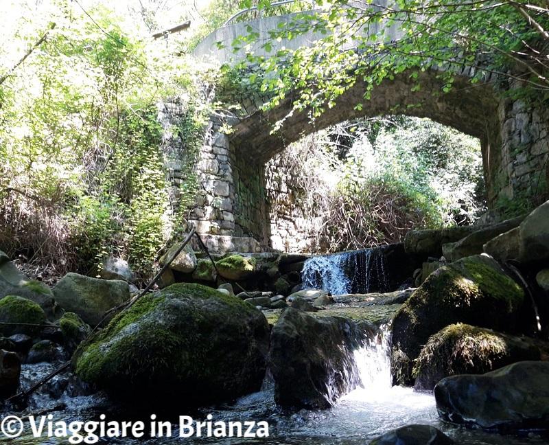 Cosa fare a Ello, il Parco del Monte di Brianza