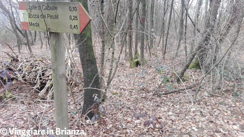 Parco della Brughiera Briantea, i cartelli del sentiero 7 a Mariano