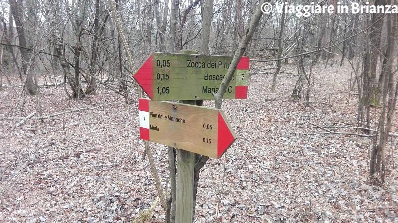 Parco della Brughiera Briantea, i cartelli del sentiero 7 nel Pian delle Monache