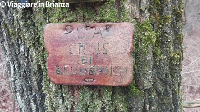 Parco della Brughiera Briantea, la Crus di Beul Bianch
