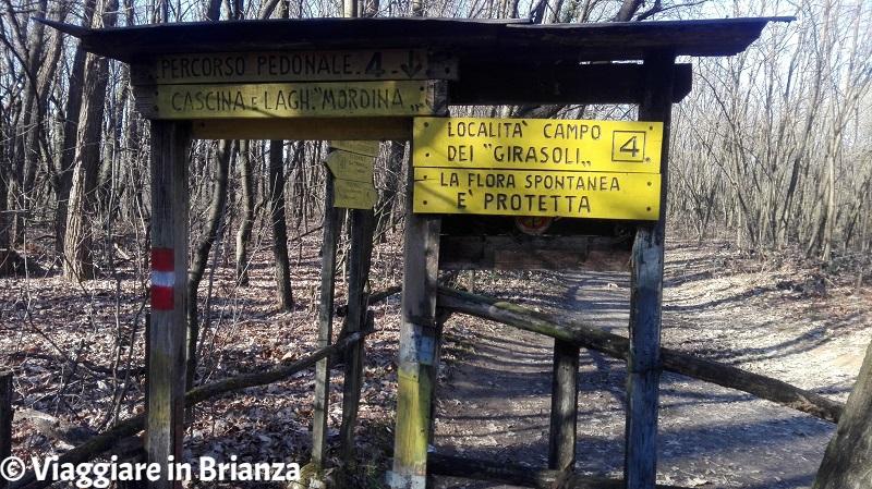 Parco della Brughiera Briantea, la località Campo dei Girasoli