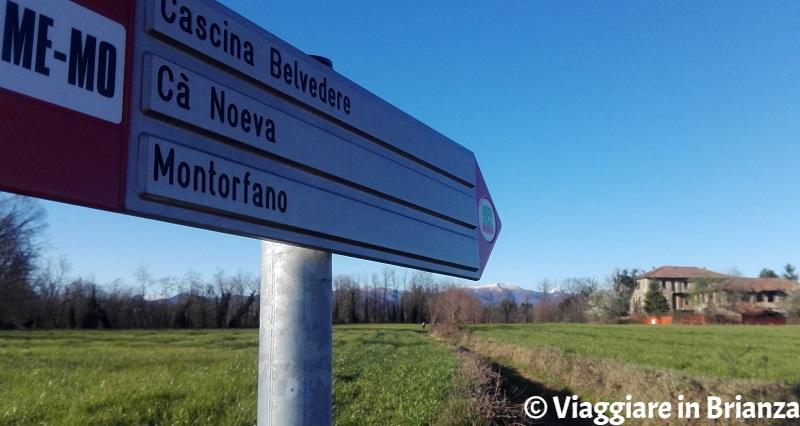 Il sentiero per Cascina Belvedere