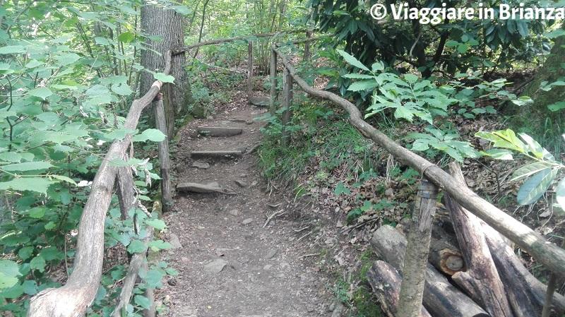 Cabiate, il sentiero 5 del Parco della Brughiera