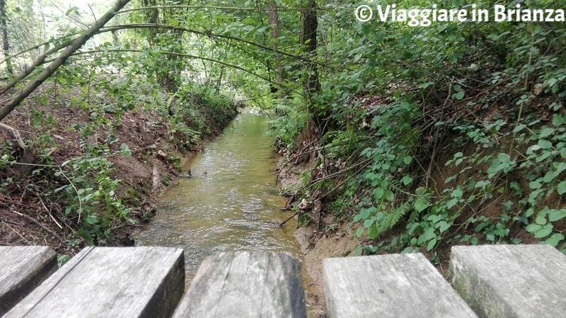 Il fosso della Valle della Brughiera a Lentate sul Seveso