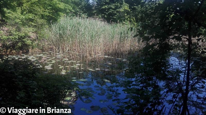 Il laghetto della Mordina