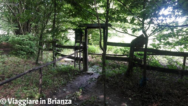 Parco della Brughiera Briantea, terreno fangoso