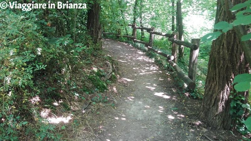 Il Parco delle Groane