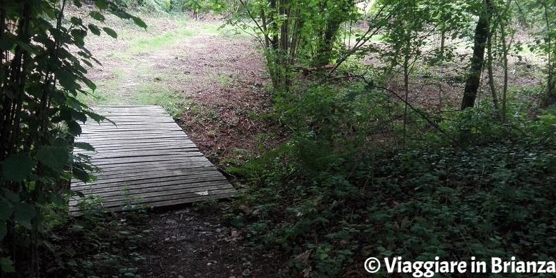 Il ponte sul fosso della Valle della Brughiera a Lentate sul Seveso