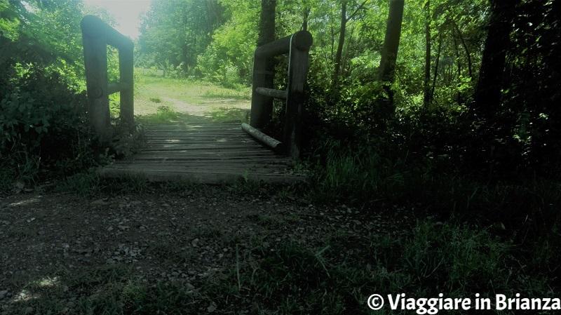 Il ponticello sul sentiero 7 per il laghetto della Mordina