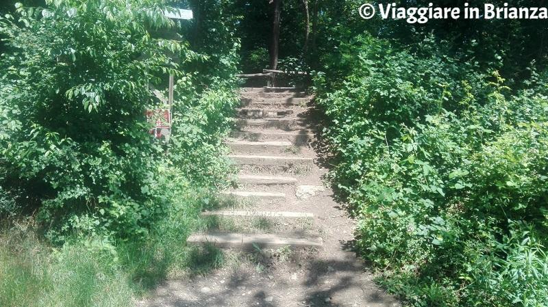La scalinata per il laghetto della Mordina