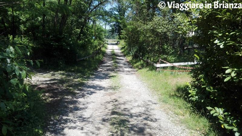 Sentiero 3, bivio dell'Ipporonco