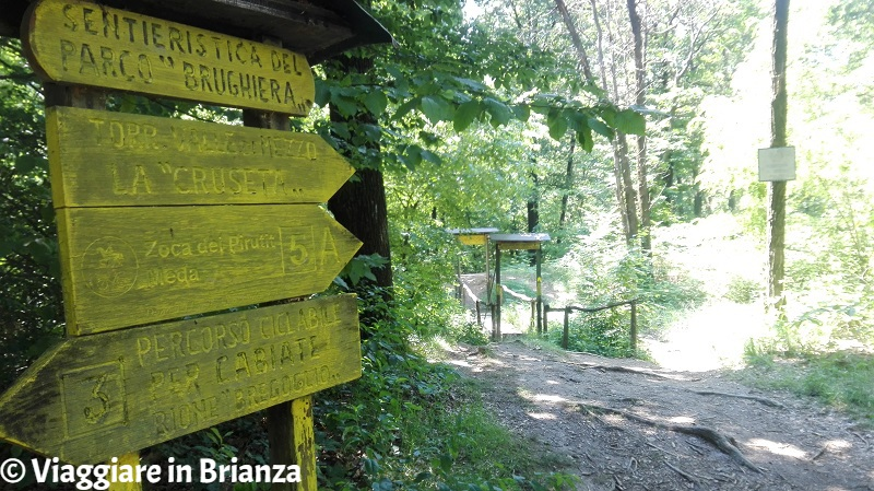 Sentiero 3, il bivio per la Zoca dei Pirutit