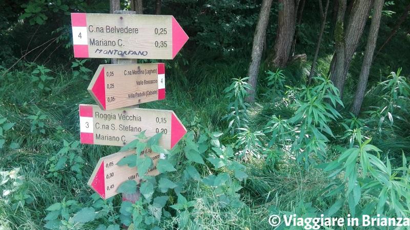 Il sentiero 3 e il sentiero 4 del Parco della Brughiera Briantea