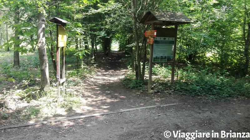 Il sentiero 3 e il sentiero 5 del Parco della Brughiera