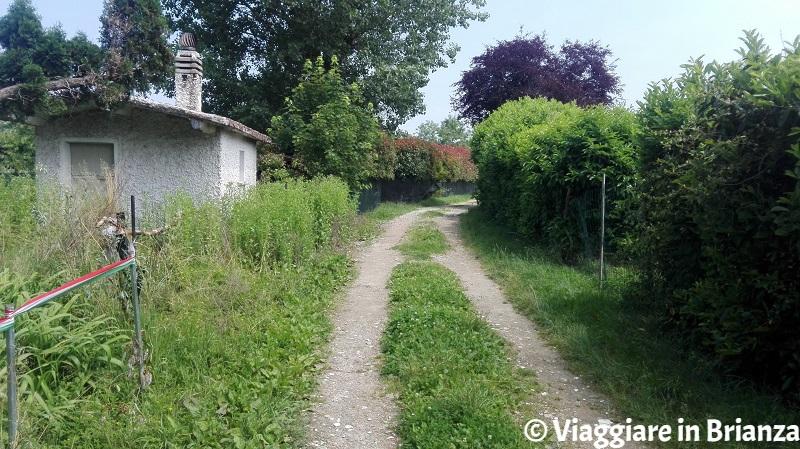 Il sentiero 5 del Parco della Brughiera Briantea