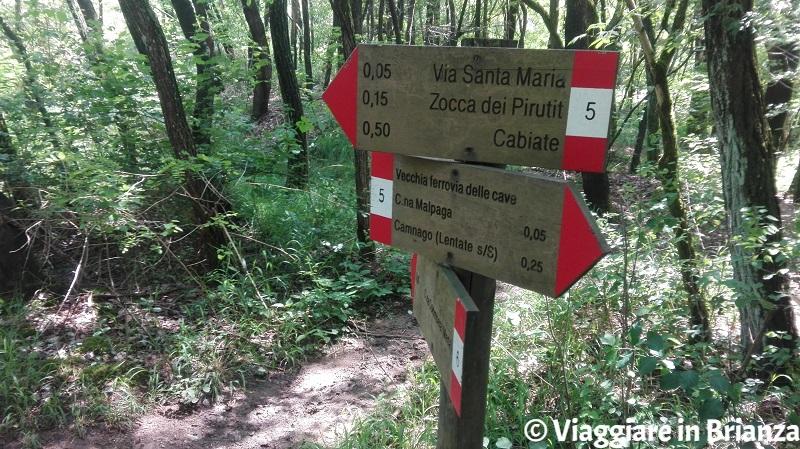 Il sentiero 5 e il sentiero 6 del Parco della Brughiera Briantea