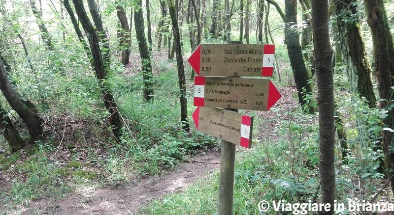 Sentiero 6, i cartelli del Parco della Brughiera Briantea