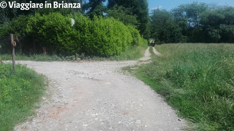 Il sentiero 7 per Castel Marino a Mariano Comense