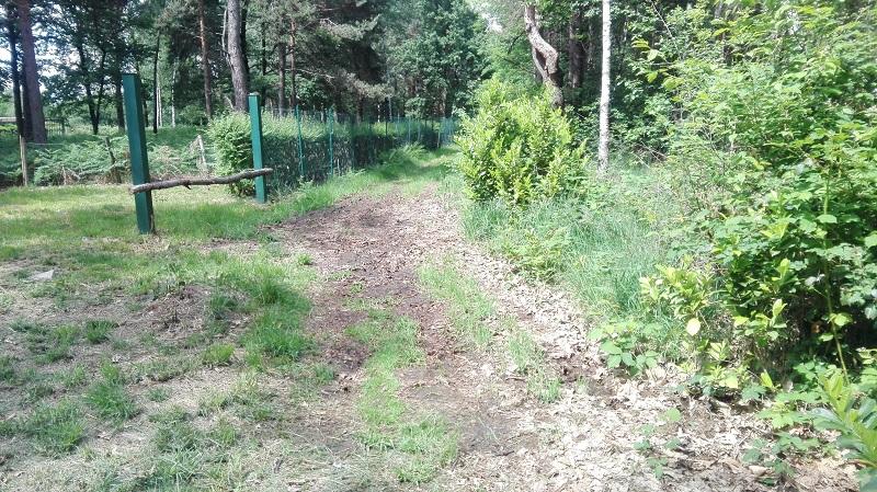 La strada per Cascina Malisca nel Parco della Brughiera Briantea