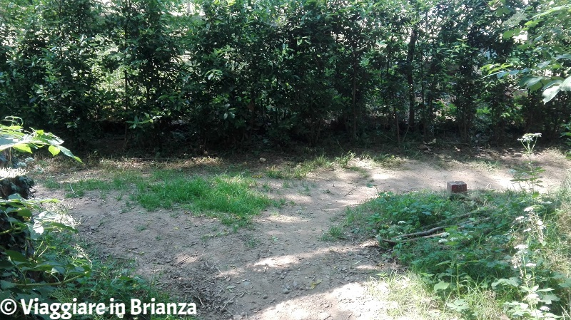 Il bivio del sentiero a Copreno