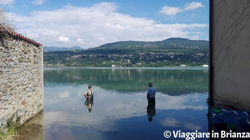 Dove pescare sul lago di Annone