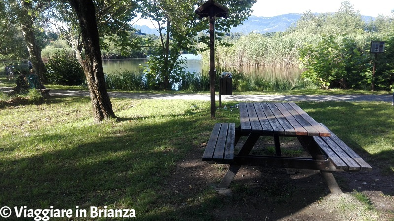 Fare un picnic al lago di Sartirana