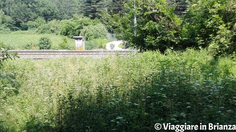 La ferrovia tra Lentate e Carimate