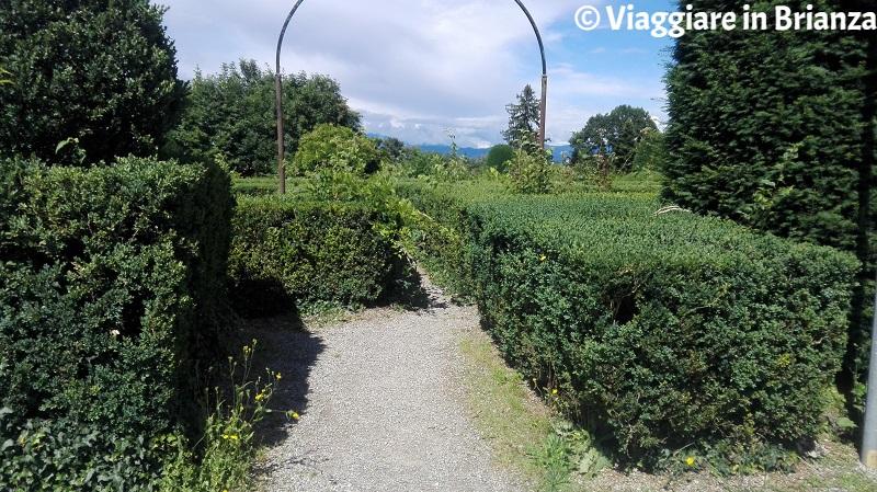 Il labirinto di Villa Cusani Confalonieri