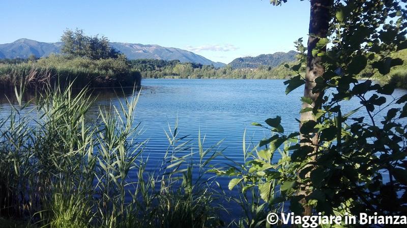Il lago di Sartirana a Merate