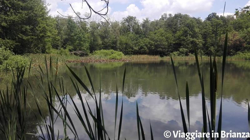 Lentate sul Seveso, il Lago Azzurro