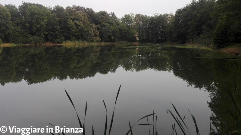Parco della Brughiera Briantea, il Lago Azzurro