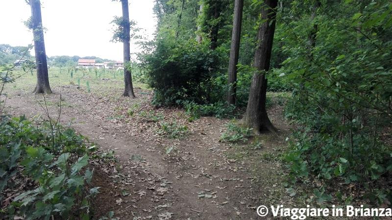 Il Parco della Brughiera: Cascina Imperatore
