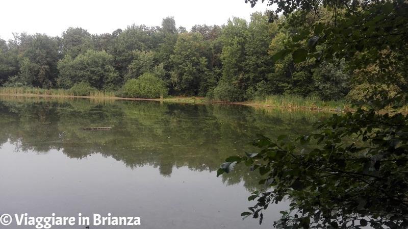 Parco della Brughiera, il Lago Azzurro