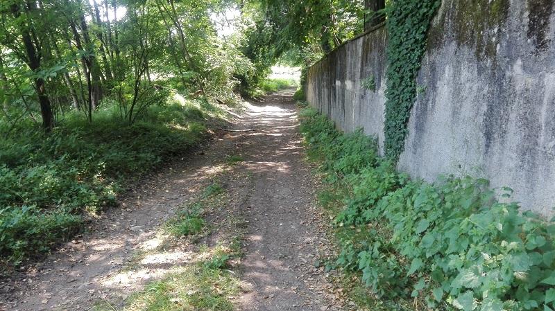 Il sentiero 1 del Parco della Brughiera nella Valle del Seveso