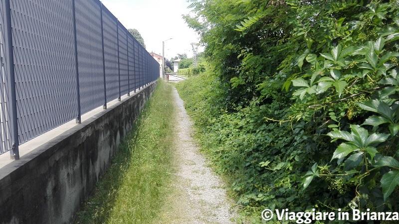 Il sentiero 2 del Parco della Brughiera a Carimate
