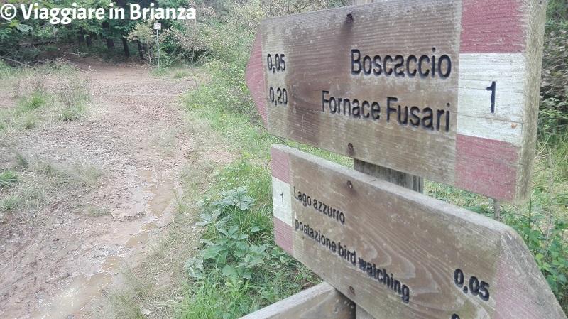Il sentiero dal Boscaccio al Lago Azzurro di Lentate