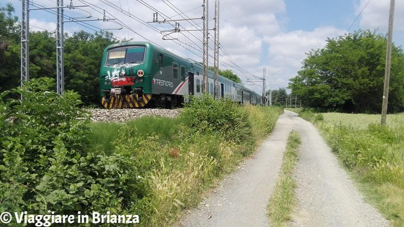 Il treno tra Lentate e Carimate