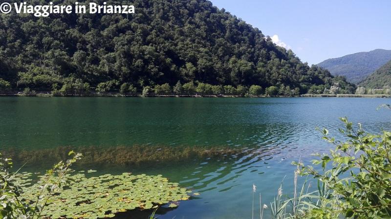 Bagno al lago in Lombardia, il lago del Segrino
