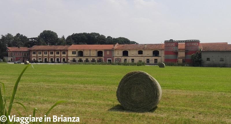 Cosa fare a Lentate sul Seveso, Villa Botanica