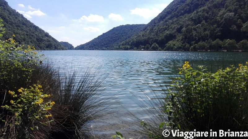 Il lago del Segrino e il bagno al lago in Lombardia