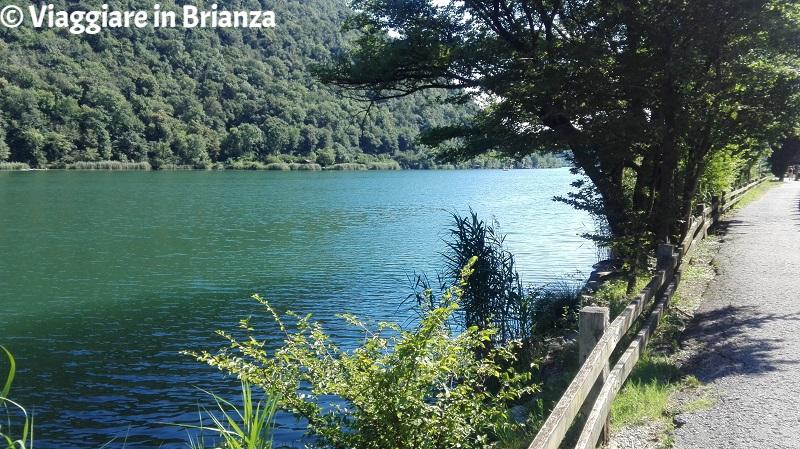 Il lago del Segrino, lago balneabile