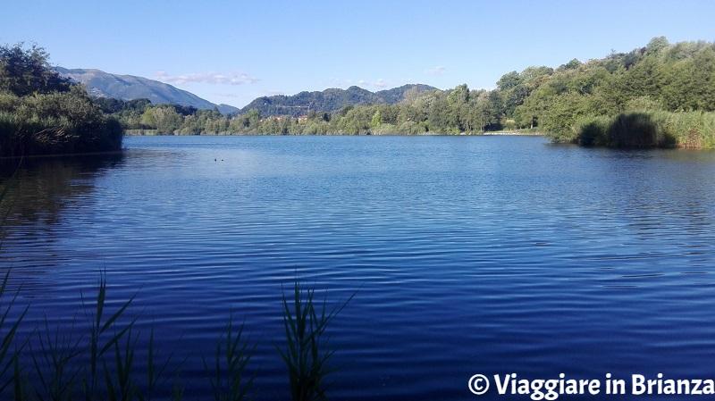 Merate, il lago di Sartirana