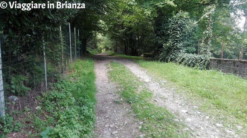 Parco della Brughiera Briantea, il sentiero 9