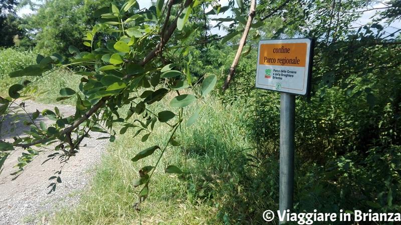 Il Parco della Brughiera, il sentiero 9