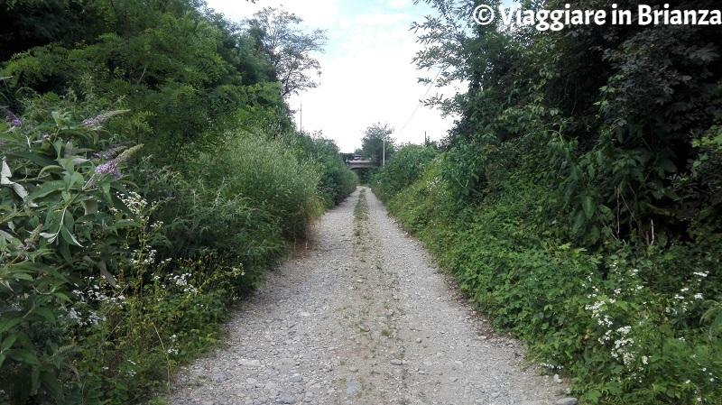 Il sottopasso del sentiero 9 del Parco della Brughiera