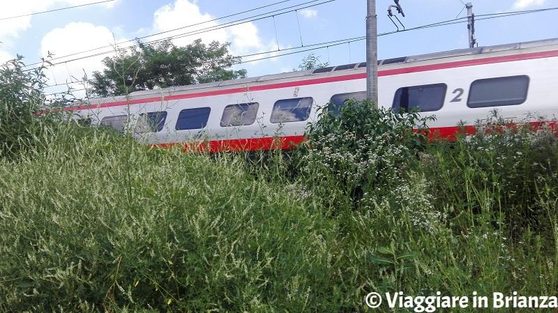 Il treno sul sentiero 9 del Parco della Brughiera