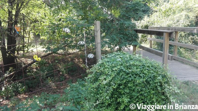 Il ponte del Butterfly Garden a Muggiò