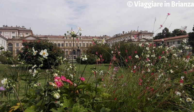 Il Roseto Niso Fumagalli e la Villa Reale