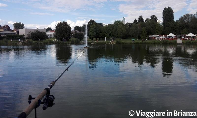 Dove pescare vicino a Milano, il laghetto di Giussano